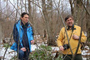 საერთაშორისო მხარდაჭერა წაბლის ტყის კორომების აღდგენისათვის